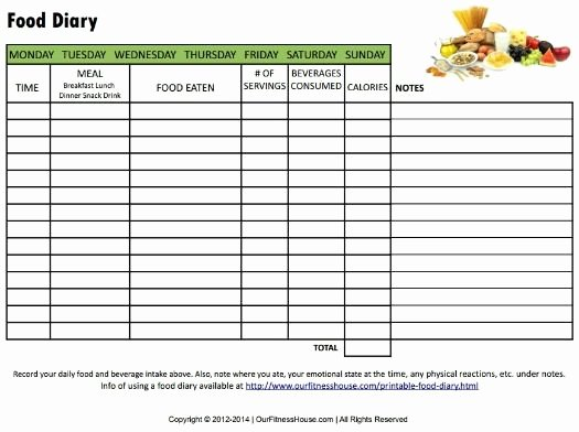 Calorie Counter Spreadsheet Awesome 16 Fresh Daily Calorie Counter Spreadsheet S