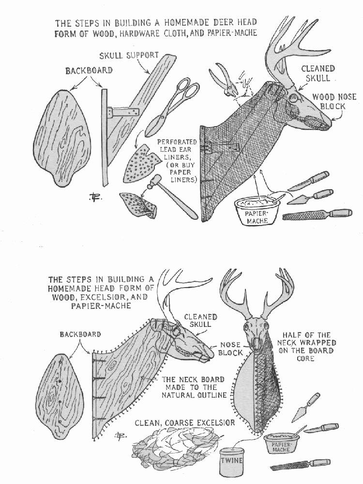 Cardboard Deer Head Template Elegant 17 Paper Mache Deer Head Diy Instructions