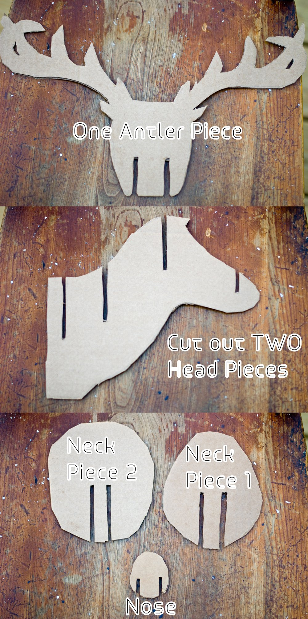 Cardboard Taxidermy Templates Awesome Faux Taxidermy Deer Diy