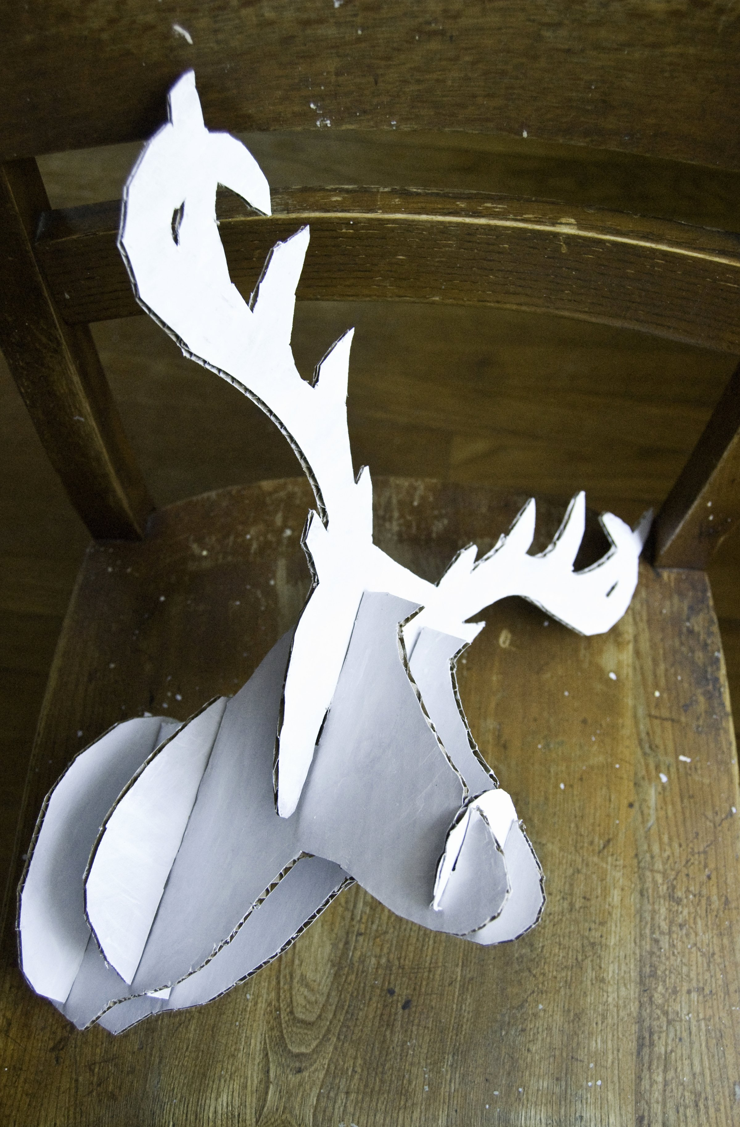 Cardboard Taxidermy Templates Best Of Teen Diy Diy Faux Taxidermy Deer