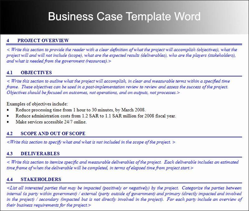 Case Review Template Best Of Business Case Template