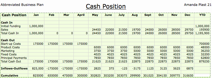 Cash Position Report Template Inspirational Business Portfolio Cash Position