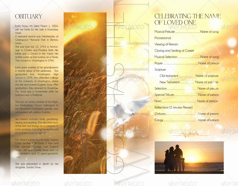 Celebration Of Life Program Template Best Of Celebration Of Life Funeral Program Brochure Template by