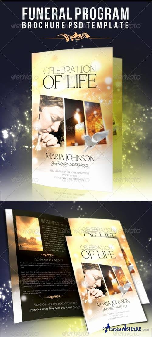Celebration Of Life Program Template Elegant Graphicriver Celebration Of Life Funeral Program