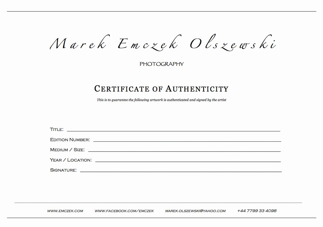 Certificate Of Authenticity Template Beautiful How to Create A Certificate Authenticity for Your