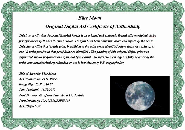 Certificate Of Authenticity Template Best Of Certificate Authenticity Wording