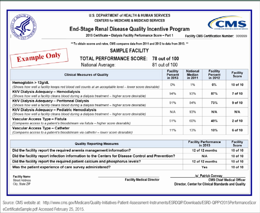 Certificate Of Quality Template New Quality Incentive Program Sample 2015 Performance Score