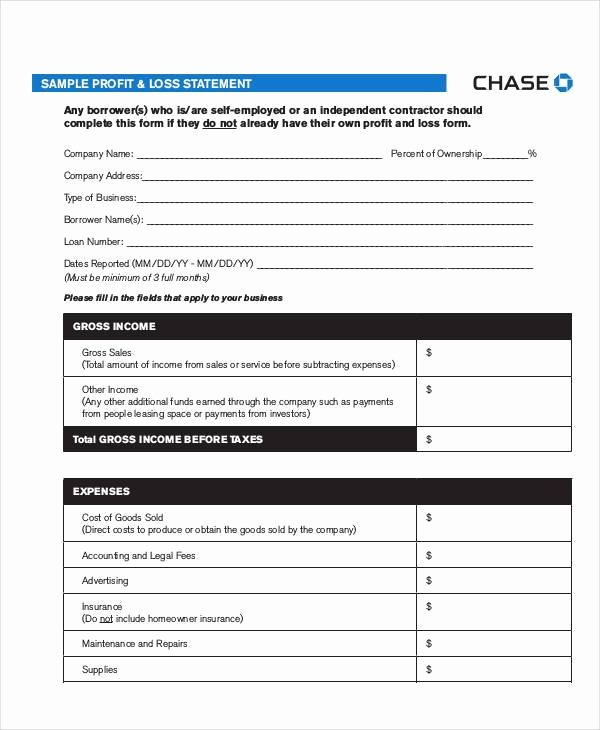 Chase Bank Check Template Beautiful Chase Bank Statement Pdf Sample