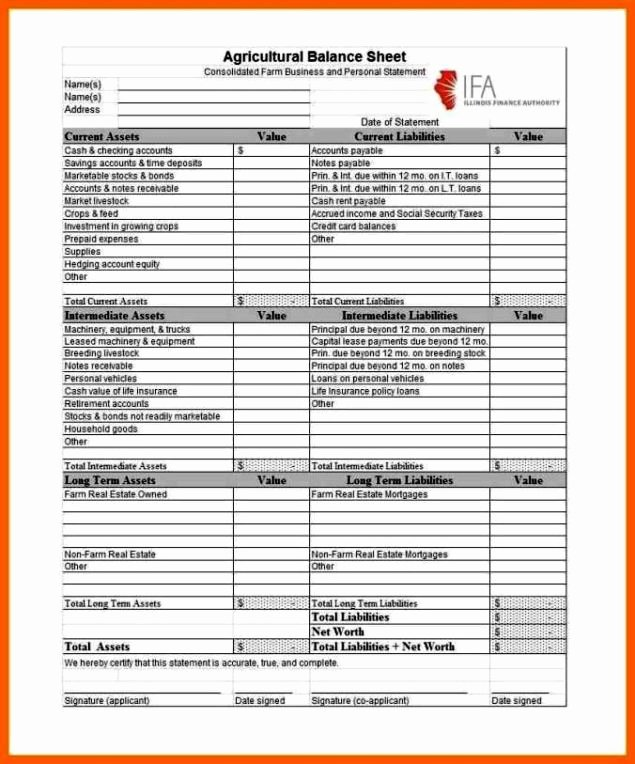 Checking Account Balance Sheet Template Lovely Checking Account Balance Sheet Template Sampletemplatess