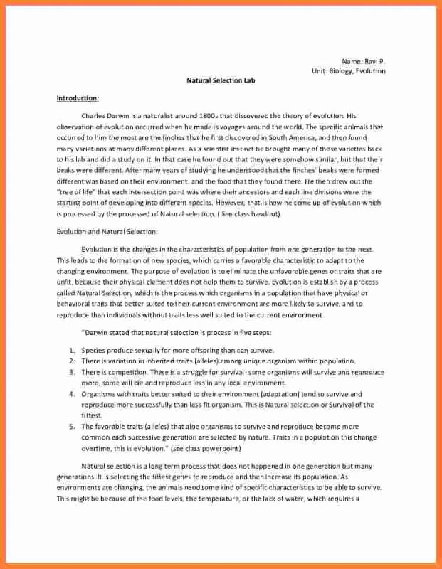 Chemistry Lab Report Template New Chemistry Lab Report Template