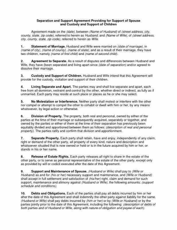 Child Custody Letter Template Lovely Custody Agreement Template