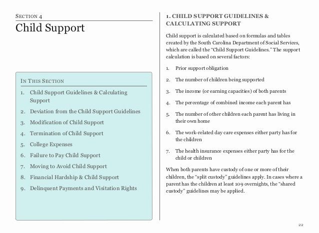 Child Relocation Agreement Template Fresh Divorce In south Carolina Piecing It All to Her