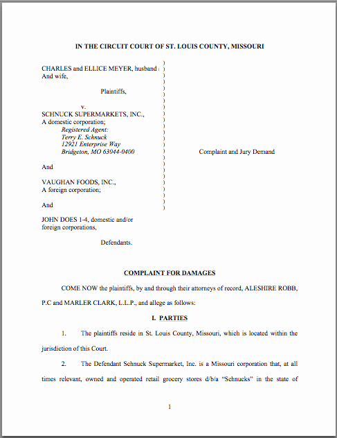 Civil Complaint form Template Inspirational Best S Of Sample Legal Plaint Sample Copy Of A