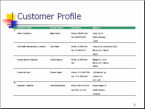 Client Profile Template Word Awesome Customer Profile Lists Information About the Tar