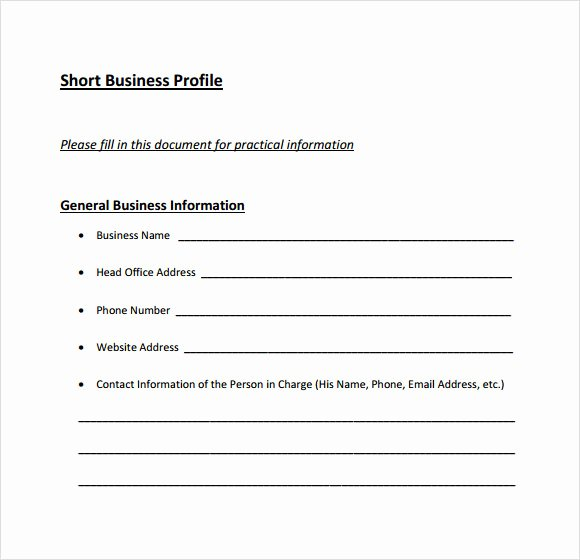 Client Profile Template Word New 6 Business Profile Samples Pdf