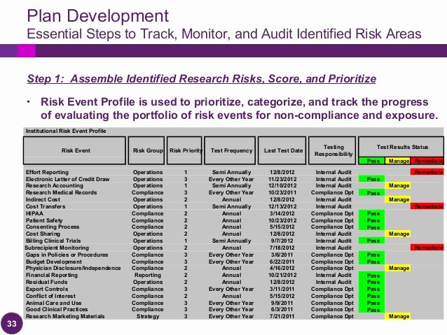 Clinical Development Plan Template Unique Implementing A Research Auditing Program 2013 Pliance