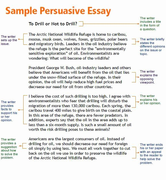 College Essay Hooks Examples Unique Hooks for Essays