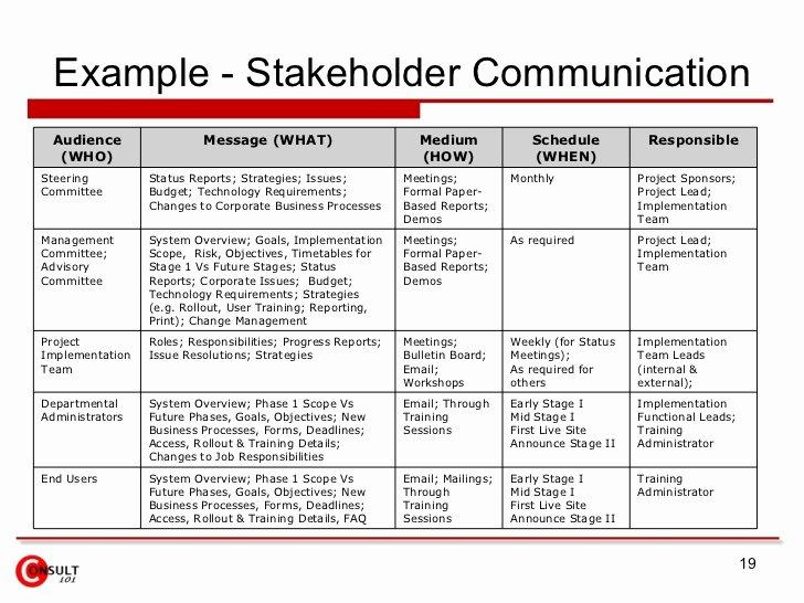 Communication Matrix Template Best Of Stakeholder Munication