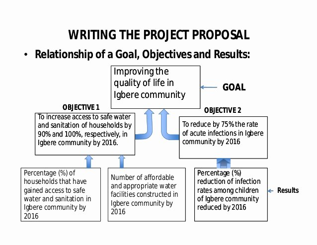 Community Project Proposal Unique Project Proposal Writing by Oji Ogbureke