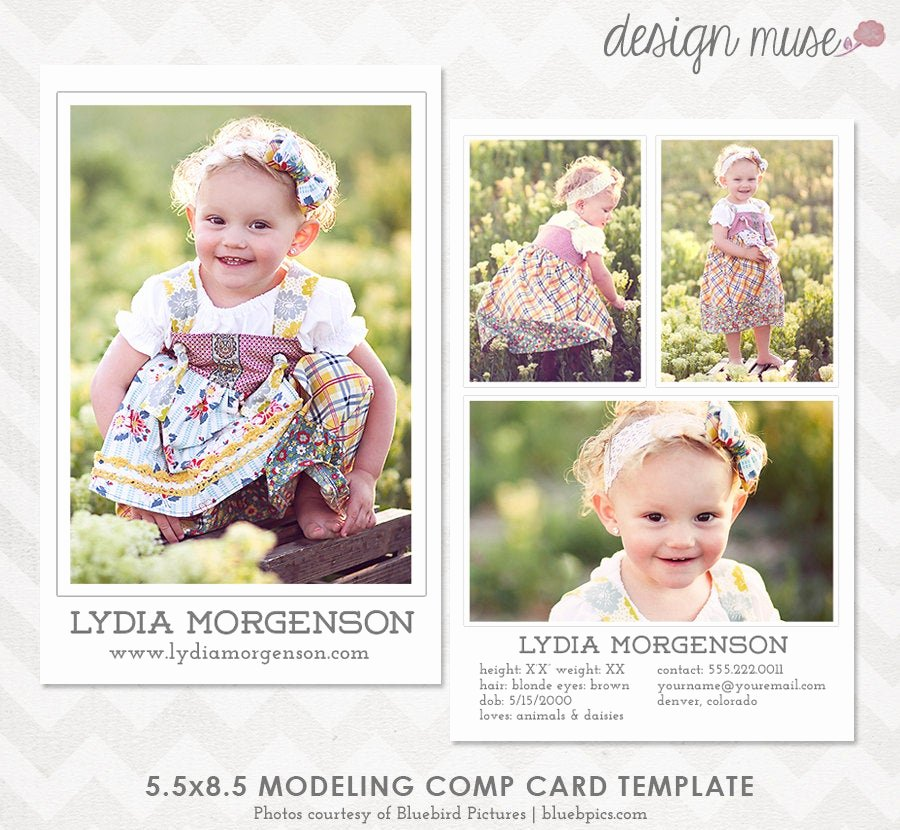 Comp Card Template Psd Download Inspirational Model P Card Template for Professional Graphers