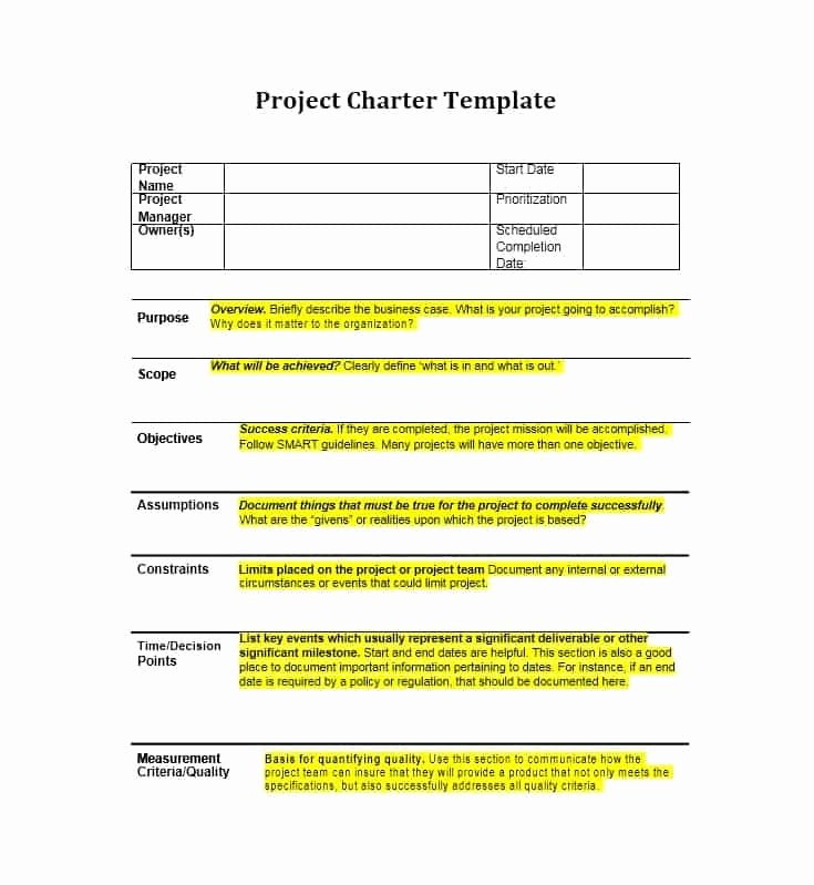 Company Charter Template Luxury 40 Project Charter Templates & Samples [excel Word