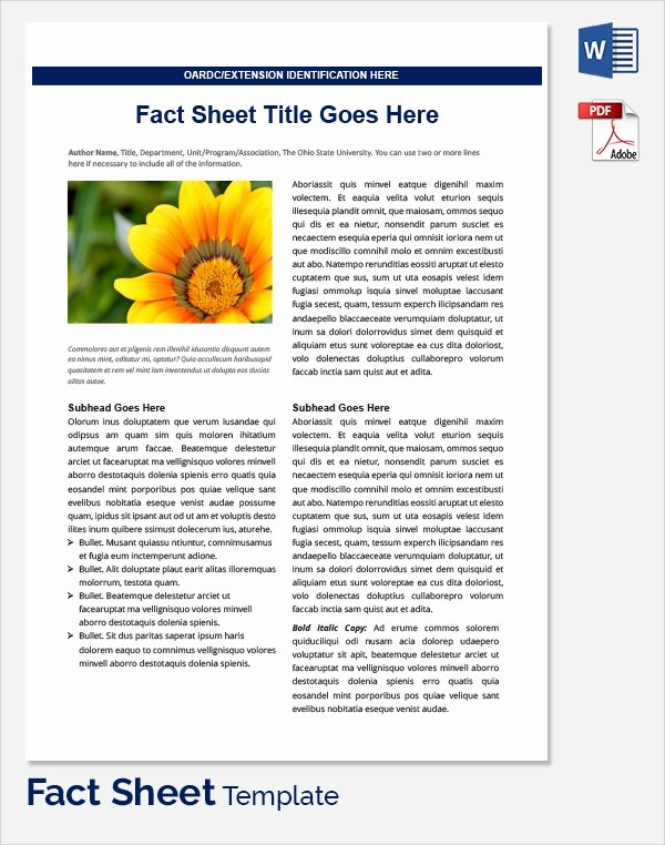 Company Fact Sheet Example Fresh Sample Fact Sheet Template 21 Free Download Documents