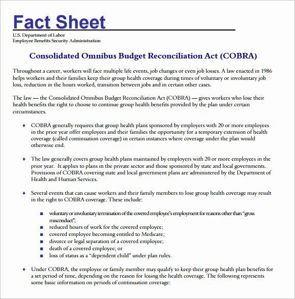 Company Fact Sheet Example New 17 Fact Sheet Templates – Free Samples Examples & format