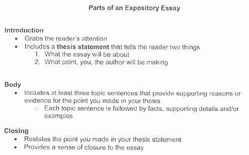 Comparative Critique Essay Example Unique Stanmartin – Resume Model