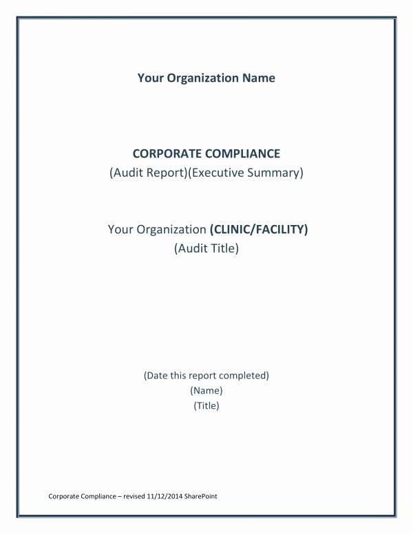 Compliance Audit Report Template Fresh 11 Pliance Audit Report Samples and Templates Pdf