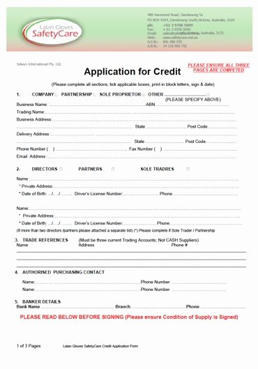 Consumer Credit Application form Awesome Free Printable Credit Application form form Generic