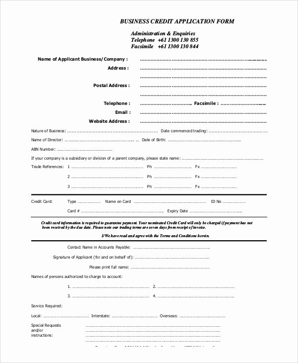 Consumer Credit Application form Fresh Sample Credit Application 11 Examples In Pdf Word