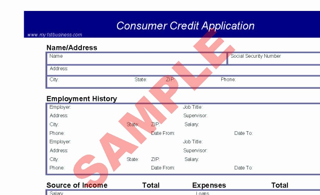 Consumer Credit Application form Inspirational Consumer Credit Application Preview