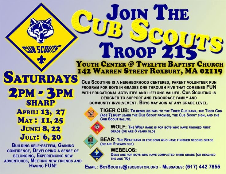Cub Scout Flyer Template Inspirational Cub Scout Pack Meeting Flyer Newsletter Idea