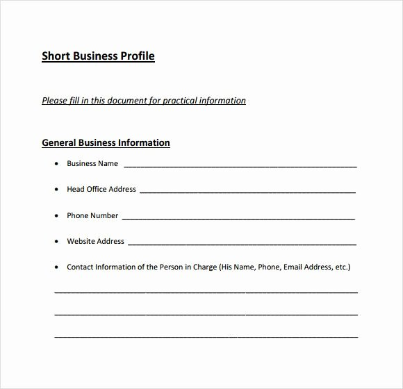 Customer Profile Template Excel Lovely 8 Business Profile Templates