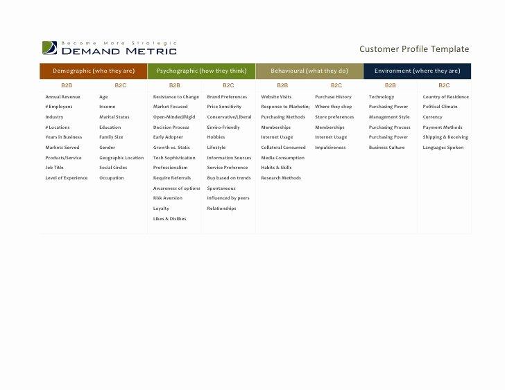 Customer Profile Template Excel Unique Customer Profile Template