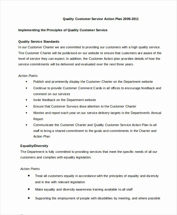 Customer Service Action Plan Examples Awesome Action Plan Template 28 Free Pdf Word format