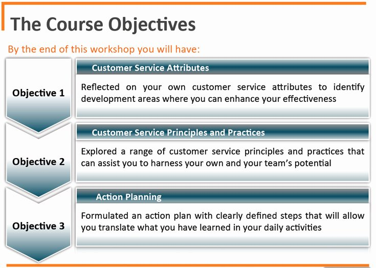 Customer Service Action Plan Examples Elegant Customer Service
