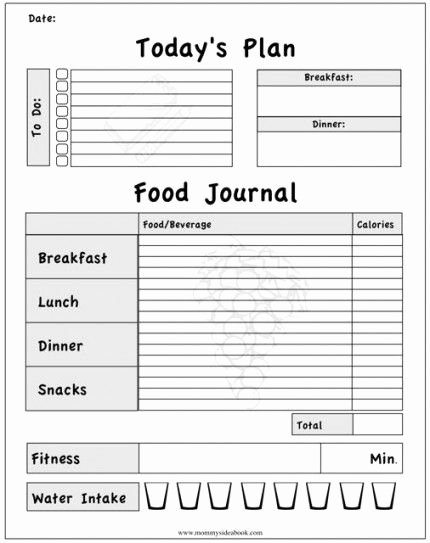 Daily Food Intake Chart Luxury Printable Workout Journal