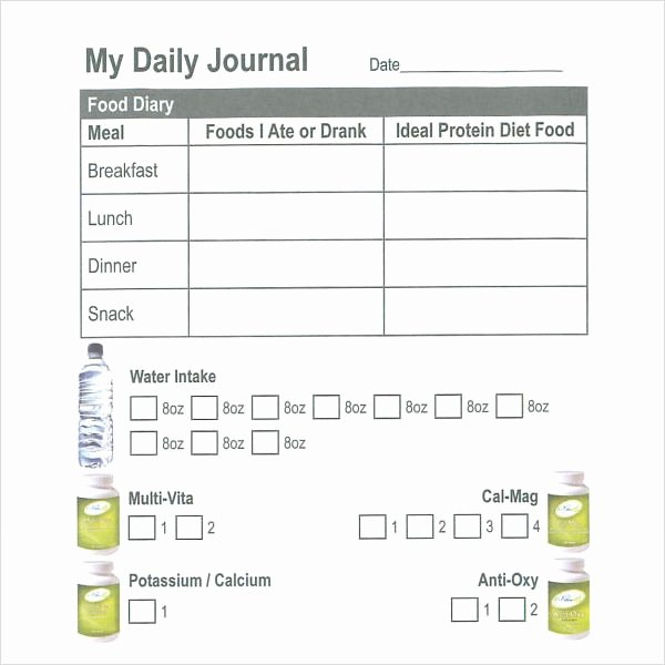 Daily Journal Template Word Awesome 16 Sample Daily Log Templates Pdf Doc