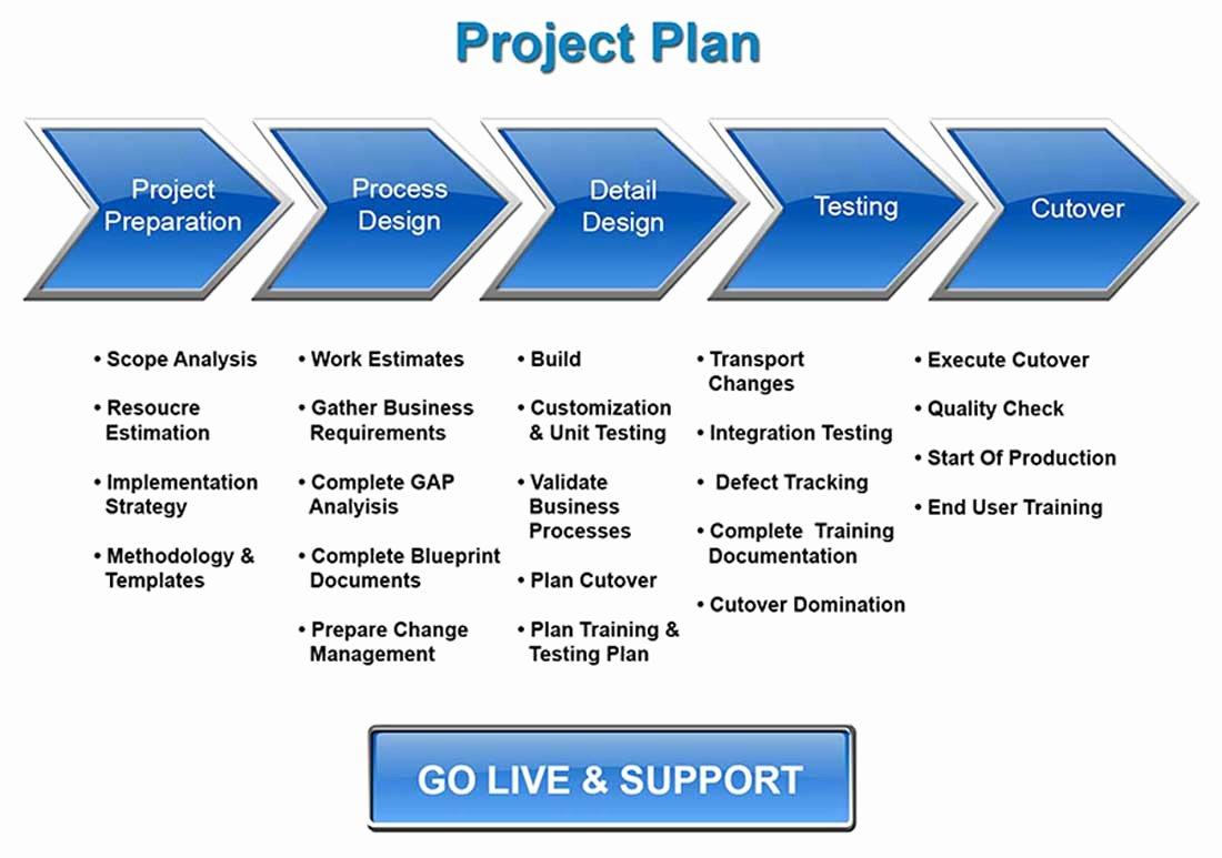 Deployment Plan Project Management Lovely Sap Implementation & Migration