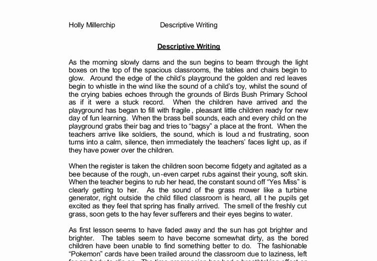 Descriptive Essay Examples College Inspirational Playground Descriptive Essay