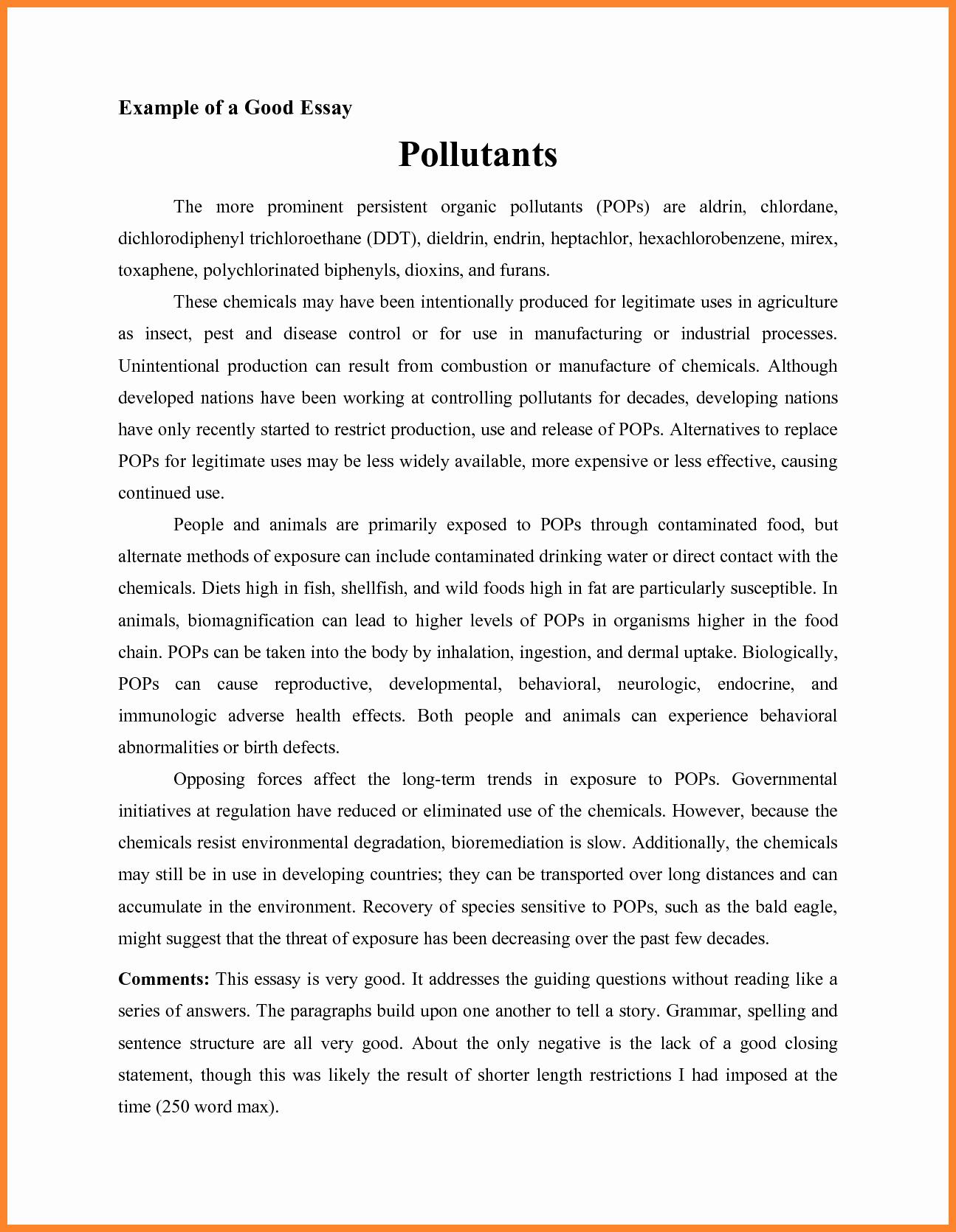 Descriptive Essay Examples College New 51 Examples Descriptive Essay Descriptive Essay A