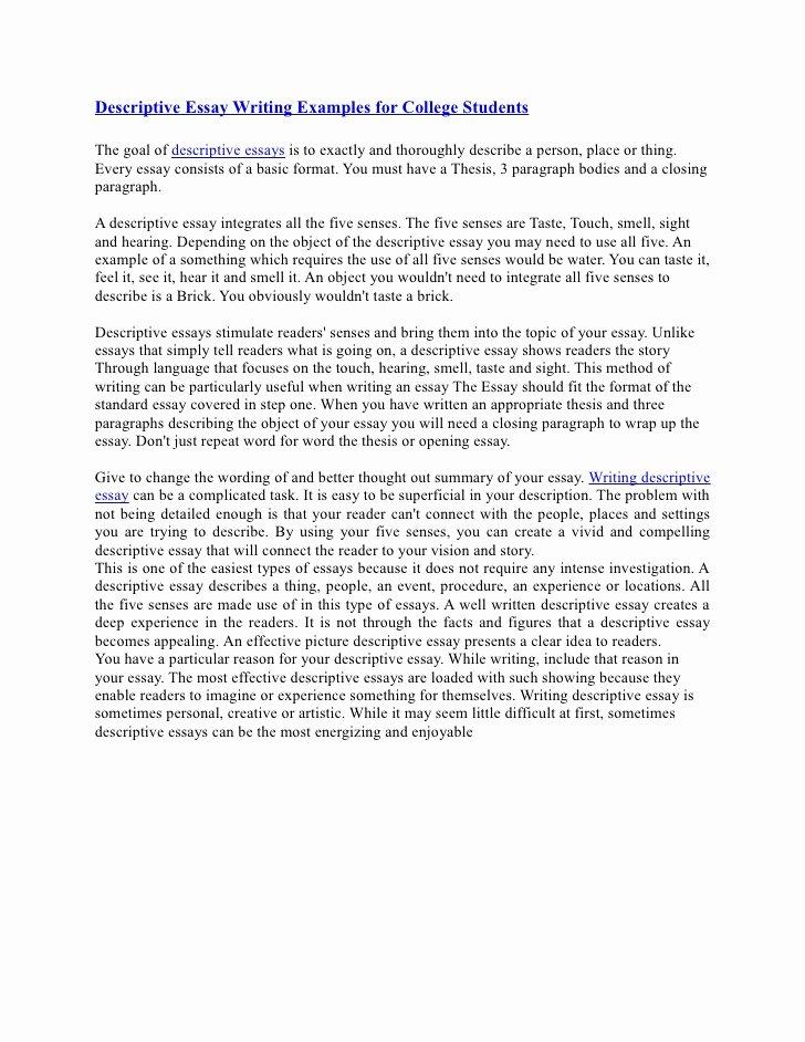 Descriptive Essay Examples College Unique Descriptive Essay Writing Examples for College Students