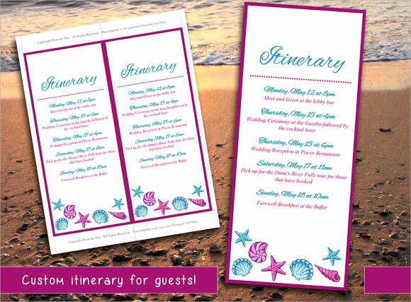 Destination Wedding Itinerary Template Beautiful 9 Wedding Itinerary Samples