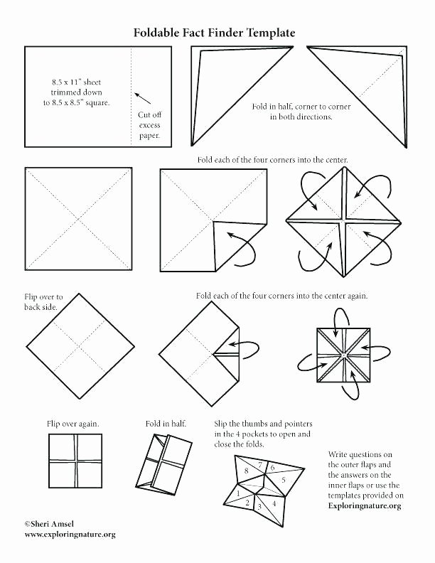 Dice Template Pdf Elegant Eight Sided Dice Printable