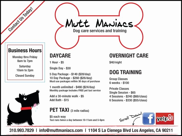 Dog Boarding Report Card Template Elegant 15 Best Images About Grooming Flyers On Pinterest