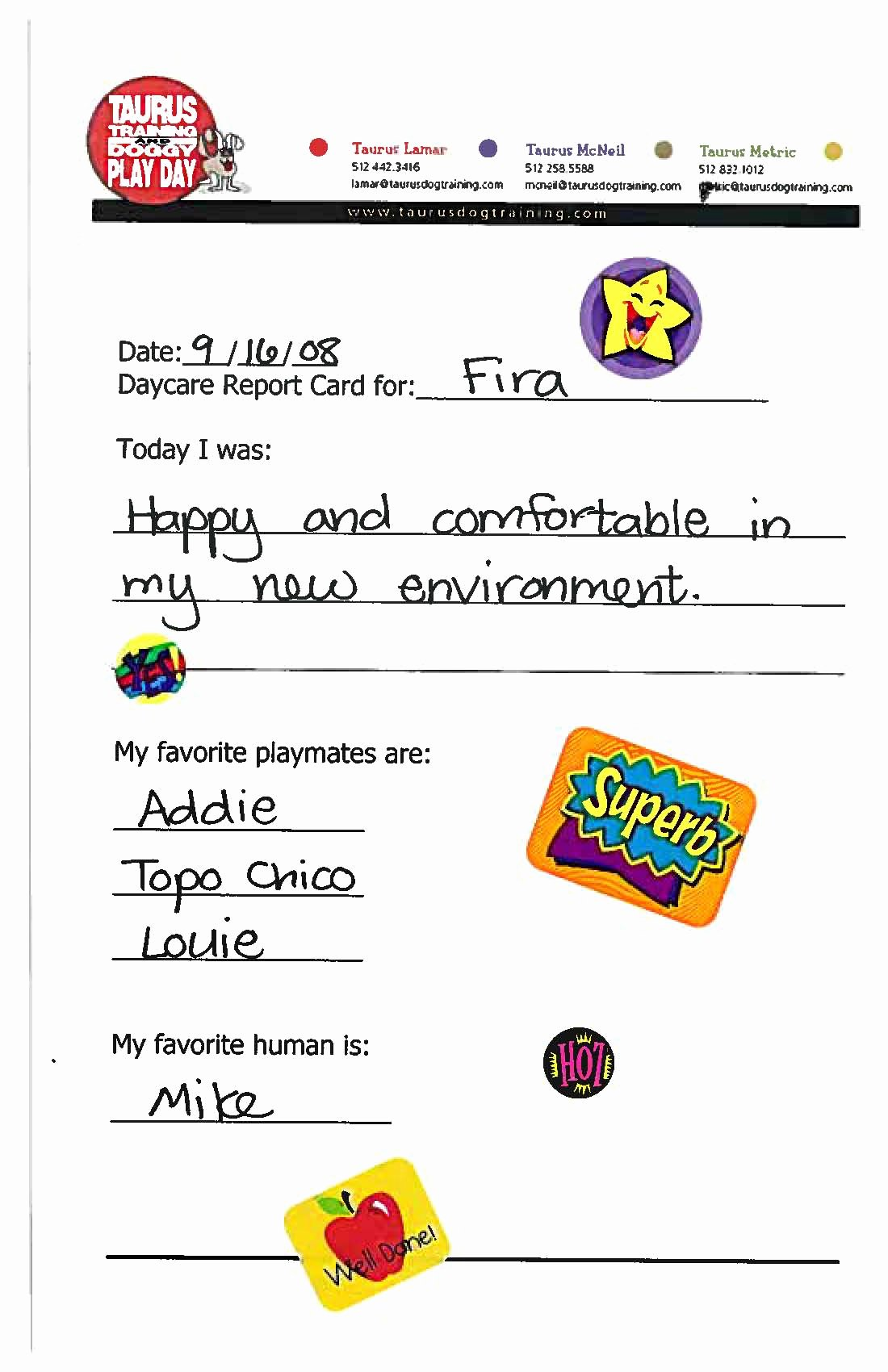 Dog Boarding Report Card Template Inspirational 21 Of Doggy Daycare Report Card Template