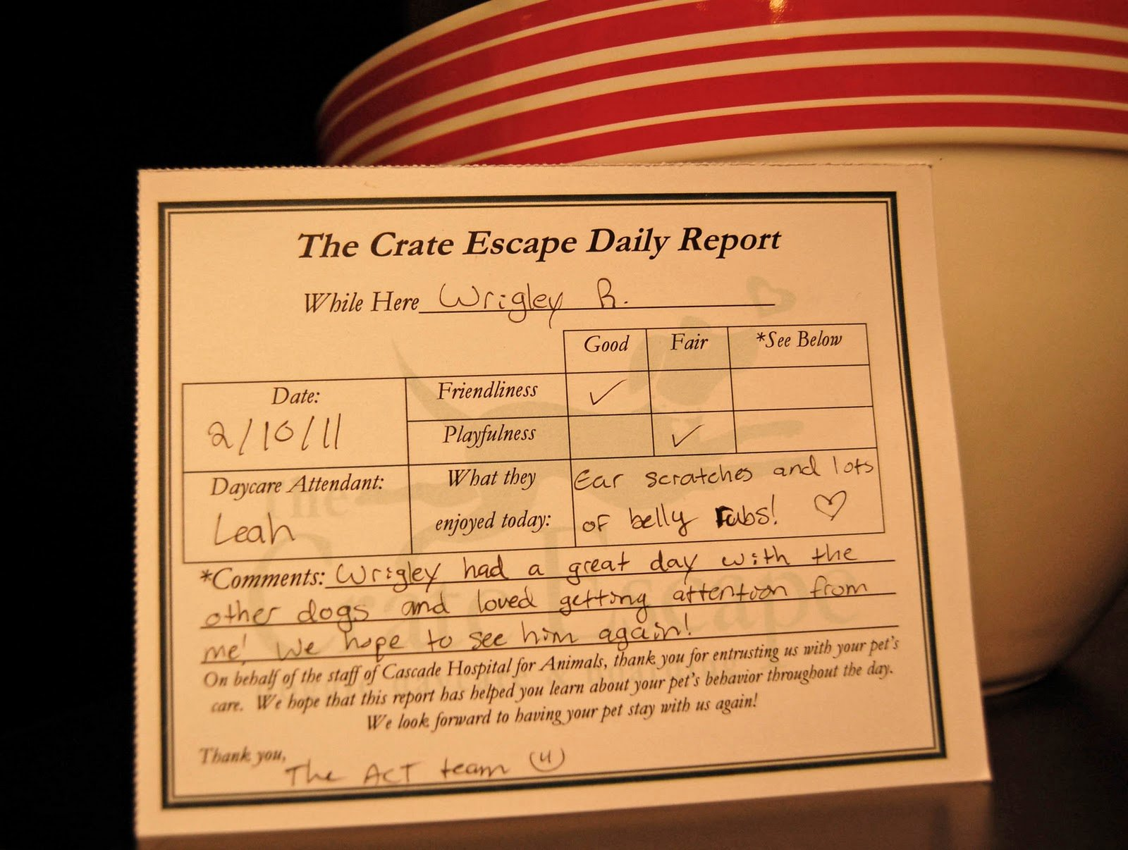 Dog Daycare Report Card Awesome I M totally Going to Be that Mom · the Girl In the Red Shoes