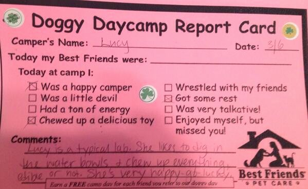 "Dog Daycare Report Card Beautiful Jamie Primeau On Twitter ""lol Lucy Goes to A New Doggie"