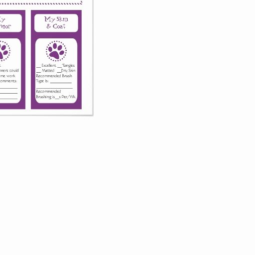 Dog Daycare Report Card Beautiful Pet Report Cards Personalized Flyer
